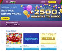 Bingo For Money Homepage