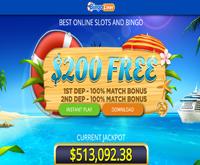 bingo liner bonus