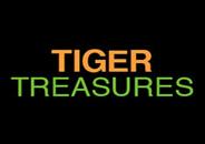 Tiger Treasures Slot